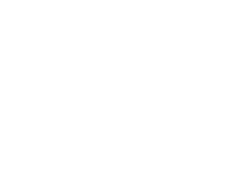 The Fortunate Fox